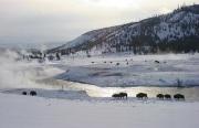WinterPark24