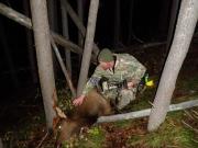 hunt24