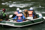 Rafting11
